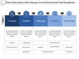 Data Quality Assess Define Manage Enrich Distribute Audit Rules Management