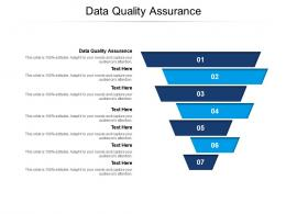 Data Quality Assurance Ppt Powerpoint Presentation File Example File Cpb