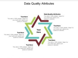 Data Quality Attributes Ppt Powerpoint Presentation Slides Themes Cpb