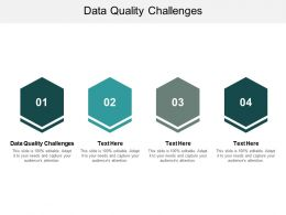 Data Quality Challenges Ppt Powerpoint Presentation Model Icons Cpb