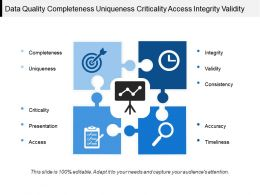 Data Quality Completeness Uniqueness Criticality Access Integrity Validity