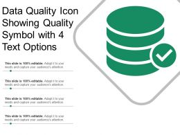 Data Quality Icon Showing Quality Symbol With 4 Text Options