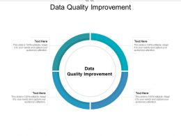 Data Quality Improvement Ppt Powerpoint Presentation Show Outline Cpb