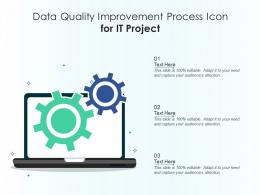 Data Quality Improvement Process Icon For IT Project