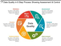 Data Quality In 6 Step Process Showing Assessment And Control