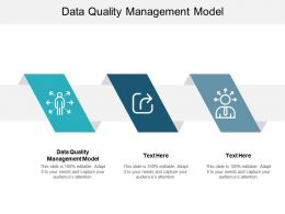 Data Quality Management Model Ppt Powerpoint Presentation Slides Example Cpb