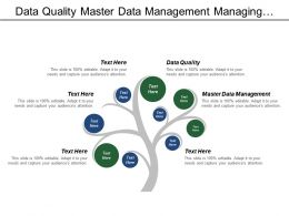 Data Quality Master Data Management Managing Integrated Brands