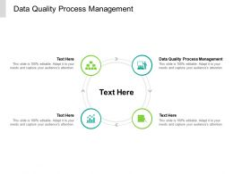 Data Quality Process Management Ppt Powerpoint Presentation Infographic Template Ideas Cpb