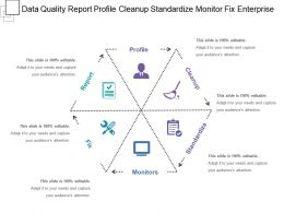 Data Quality Report Profile Cleanup Standardize Monitor Fix Enterprise