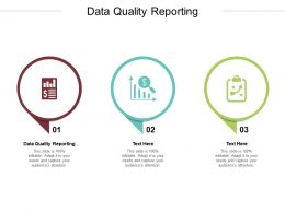 Data Quality Reporting Ppt Powerpoint Presentation Outline Inspiration Cpb