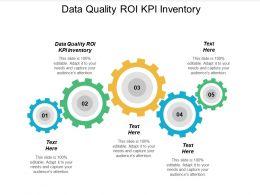 Data Quality ROI KPI Inventory Ppt Powerpoint Presentation Infographics Portfolio Cpb