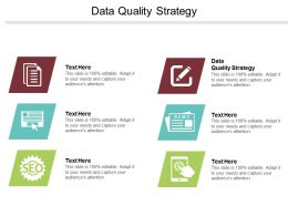 Data Quality Strategy Ppt Powerpoint Presentation File Graphics Download Cpb