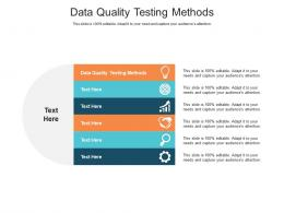 Data Quality Testing Methods Ppt Powerpoint Presentation Ideas Diagrams Cpb
