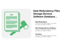 Data Redundancy Files Storage Devices Software Database Model Works