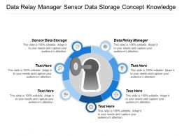 Data Relay Manager Sensor Data Storage Concept Knowledge