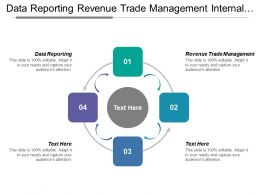 Data Reporting Revenue Trade Management Internal Service Risk Assessment