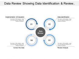 Data Review Showing Data Identification And Review Analysis