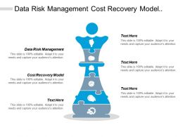 Data Risk Management Cost Recovery Model Governance Models Strategy Framework Cpb