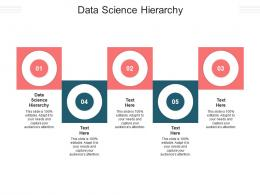 Data Science Hierarchy Ppt Powerpoint Presentation Inspiration Professional Cpb