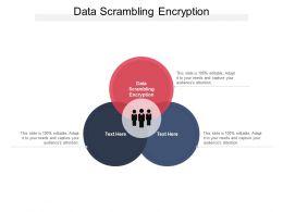 Data Scrambling Encryption Ppt Powerpoint Presentation Portfolio Images Cpb