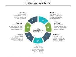 Data Security Audit Ppt Powerpoint Presentation Portfolio Introduction Cpb