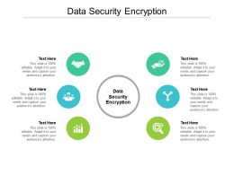 Data Security Encryption Ppt Powerpoint Presentation Gallery Format Ideas Cpb