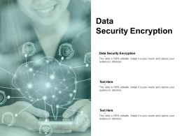 Data Security Encryption Ppt Powerpoint Presentation Icon Themes Cpb