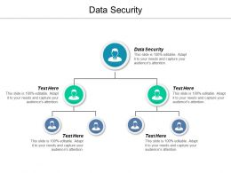 Data Security Ppt Powerpoint Presentation Gallery Clipart Cpb
