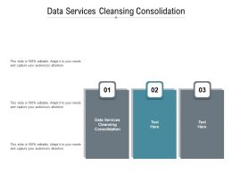 Data Services Cleansing Consolidation Ppt Powerpoint Presentation Slide Cpb