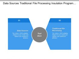 Data Sources Traditional File Processing Insulation Program System Describe