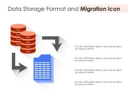 Data Storage Format And Migration Icon