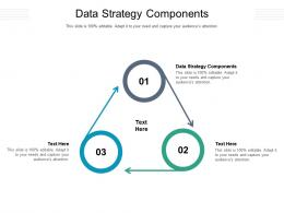Data Strategy Components Ppt Powerpoint Presentation Pictures Slide Download Cpb