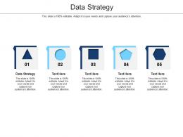 Data Strategy Ppt Powerpoint Presentation Infographics Slide Cpb