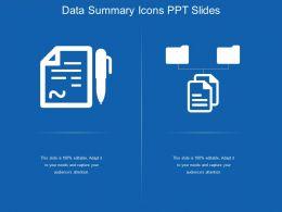 Data Summary Icons Ppt Slides