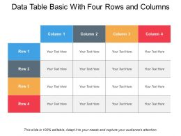 Data Table Basic With Four Rows And Columns