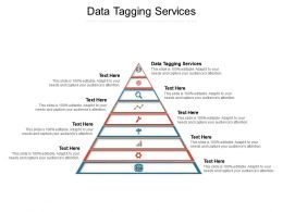 Data Tagging Services Ppt Powerpoint Presentation Ideas Background Image Cpb