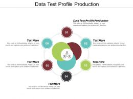 Data Test Profile Production Ppt Powerpoint Presentation Ideas Example File Cpb