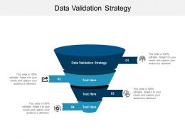 Data Validation Strategy Ppt Powerpoint Presentation File Images Cpb
