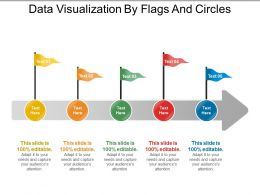 data_visualization_by_flags_and_circles_Slide01