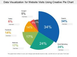 Data Visualization For Website Visits Using Creative Pie Chart