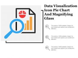 Data Visualization Icon Pie Chart And Magnifying Glass