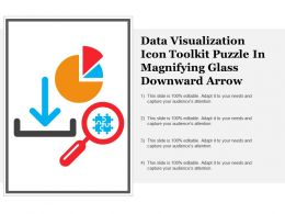 Data Visualization Icon Toolkit Puzzle In Magnifying Glass Downward Arrow