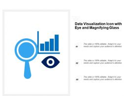 Data Visualization Icon With Eye And Magnifying Glass