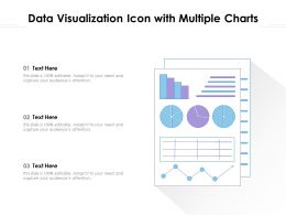 Data Visualization Icon With Multiple Charts