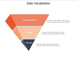 Data Visualization Ppt Powerpoint Presentation File Maker Cpb