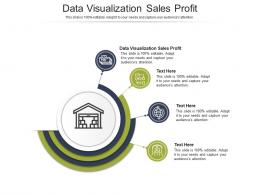 Data Visualization Sales Profit Ppt Powerpoint Presentation Show Example Cpb