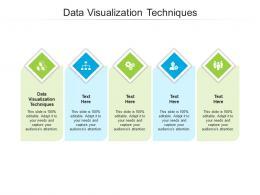 Data Visualization Techniques Ppt Powerpoint Presentation Icon Portfolio Cpb