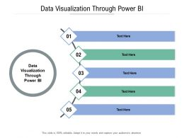Data Visualization Through Power BI Ppt Powerpoint Presentation Summary Outfit Cpb