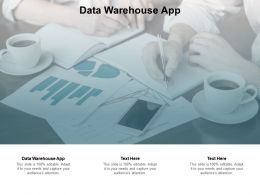 Data Warehouse App Ppt Powerpoint Presentation Styles Gridlines Cpb