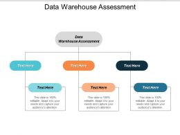 Data Warehouse Assessment Ppt Powerpoint Presentation Gallery Example File Cpb